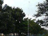 201202191