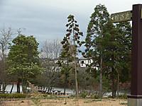 201212182